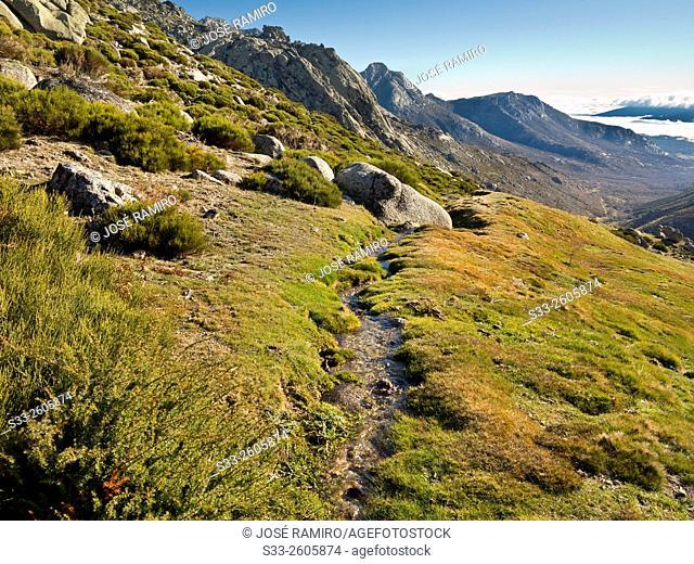 Sierra de la Paramera. Navandrinal. Avila. Castilla Leon. Spain. Europe