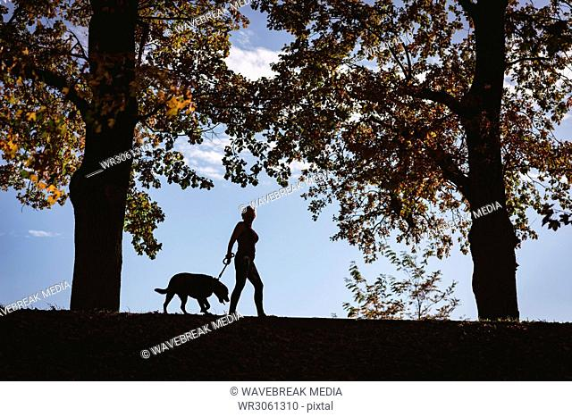 Senior woman walking in the park with a dog