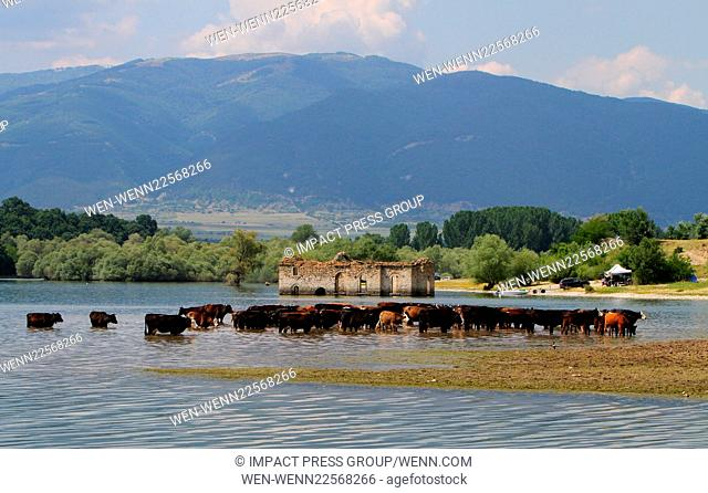 A view of the graveyard village of Zapalnya at the Zhrebchevo dam near the town of Tvardica, east of the Bulgarian capital Sofia, Monday, June, 8, 2015