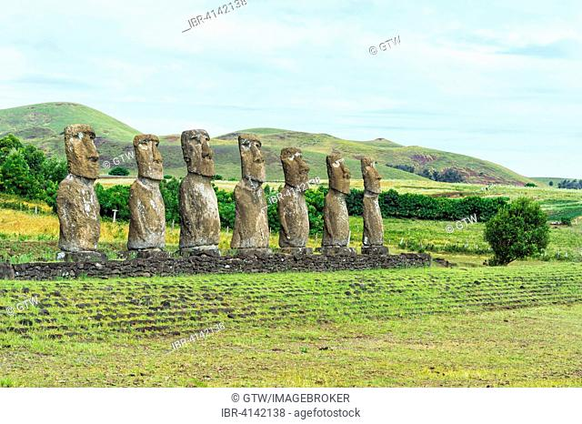 Ahu Akivi Moais, Unesco World Heritage Site, Rapa Nui National Park, Easter Island, Chile