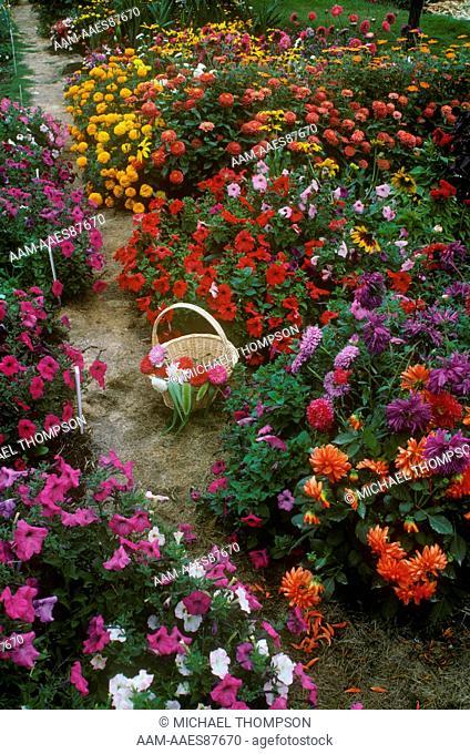 September Cutting Garden with Annuals and Perennials, Spokane, WA