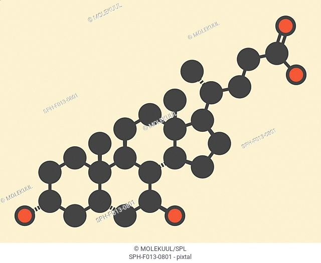 Ursodiol (ursodeoxycholic acid, UDCA) gallstone treatment drug molecule. Stylized skeletal formula (chemical structure). Atoms are shown as color-coded circles:...