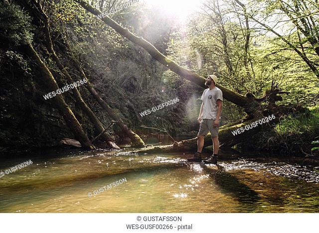 Germany, Rhineland-Palatinate, Vulkan Eifel, hiker standing at lakeshore