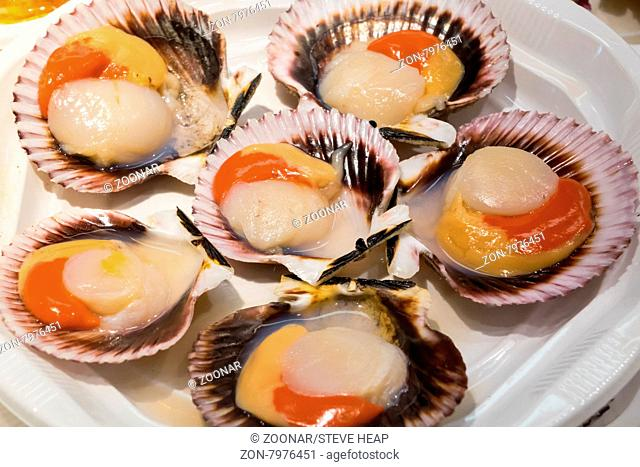 Scallops in shells on plate of hors-d'oeuvres or entradas in food counter in Spanish market in Madrid
