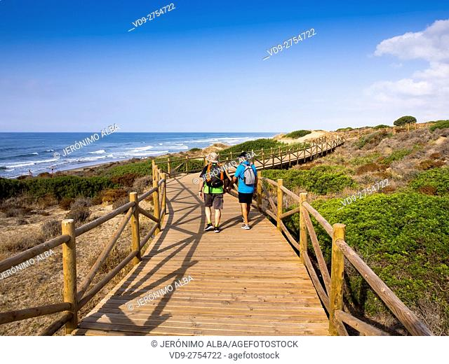 Wooden path in the natural park of Cabopino, Marbella. Costa del Sol, Malaga province. Andalusia Spain. Europe