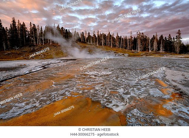 North America, American, USA, Rocky Mountains, West, Yellowstone National Park, UNESCO, World Heritage, Upper Geyser Basin