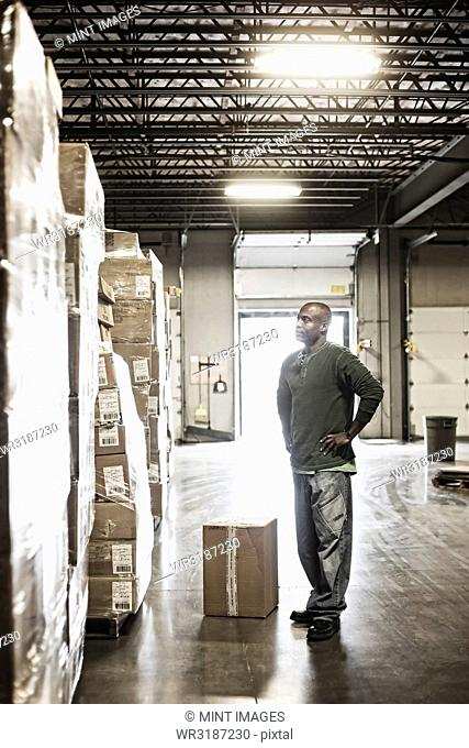 African American male warehouse worker checking inventory on stacks of cardboard boxes holding products in a large distribution warehouse with loading dock door...