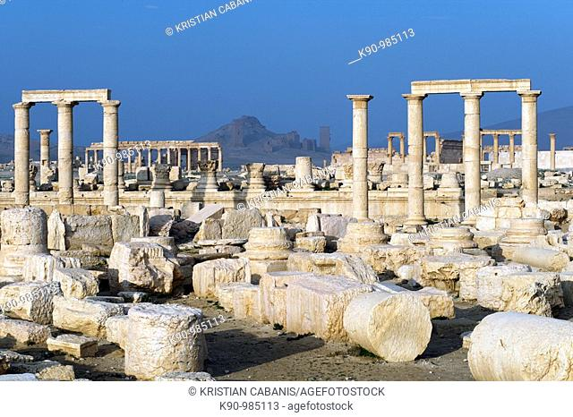The archeological site of the greco-roman ruins of the city of Palmyra at blue sky, Tadmur, Syria, Near East, Asia