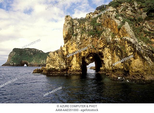 Blue Maomao Arch, Poor Knights, New Zealand