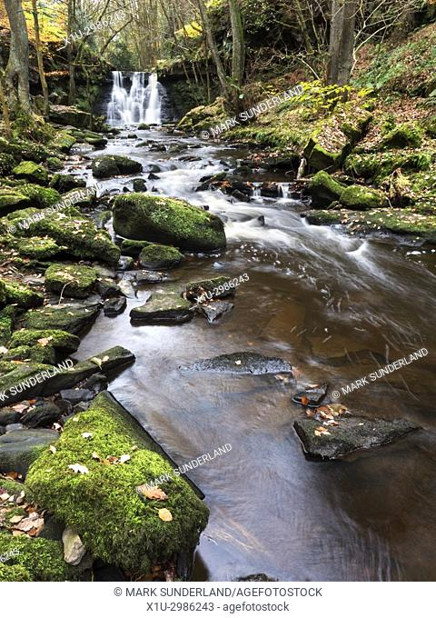 Goitstock Waterfall in Autumn, Goitstock Wood, Cullingworth, West Yorkshire, England