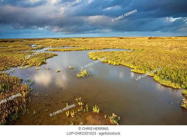 England, Norfolk, Stiffkey. The salt marshes of Stiffkey on the North Norfolk Coast