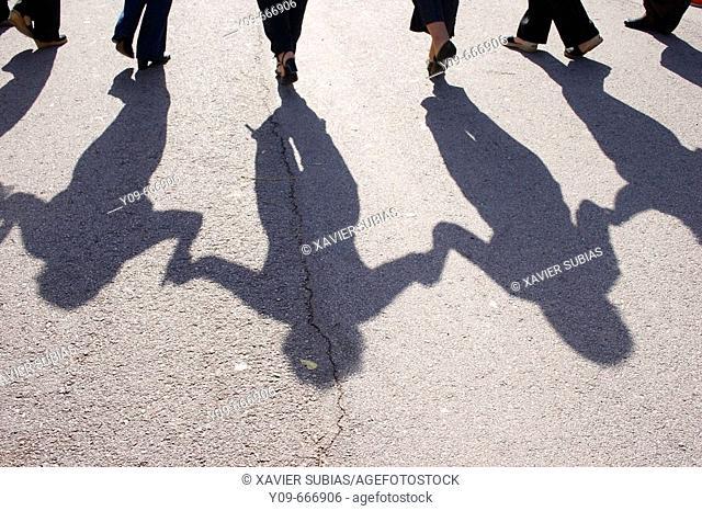 Sardana shadow