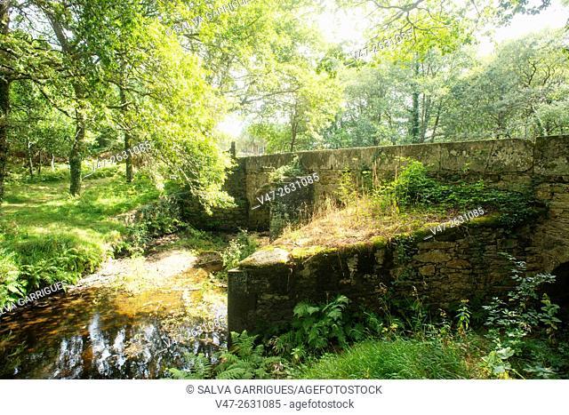 Roman bridge in the Camino de Santiago, near Mondonedo, Lugo, Galicia, Spain, Europe