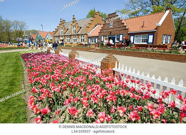 Holland, Michigan. USA. Tulip Festival. Tulip Flowers and shops on Windmill Island