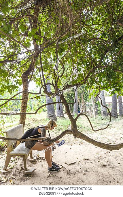 Cambodia, Phnom Penh, The Killing Fields of Choeung Ek, twisted tree and visitor in former Khmer Rouge prison camp, NR