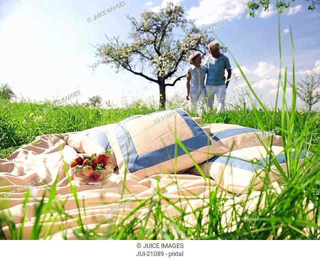 Senior couple picnicking in park