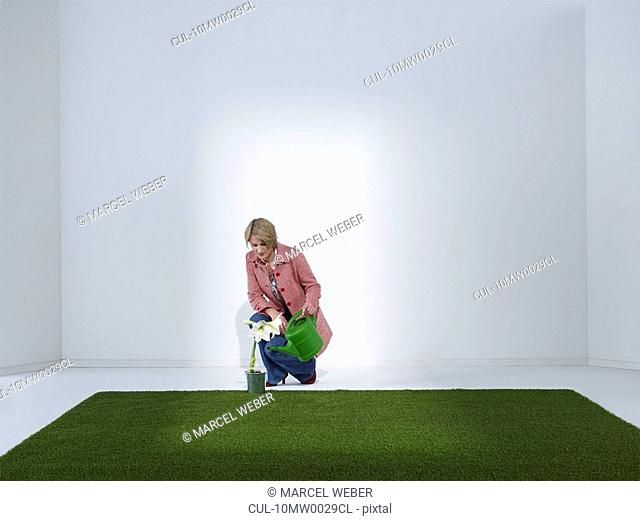 Woman watering plant in a green office