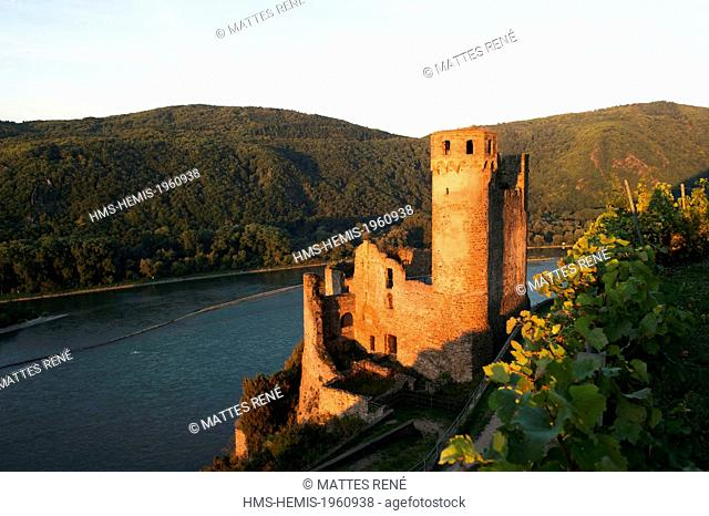 Germany, Hesse, Rudesheim, castle of Ehrenfels, the romantic Rhine listed as World Heritage by UNESCO