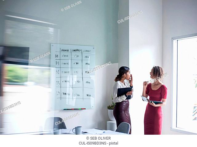 Businesswomen having discussion in office
