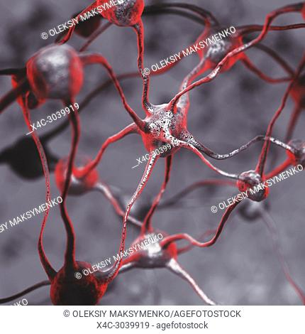 3D illustration of a Biological Neural network of a human brain, interconnected neurons, brain cells and connections, computer generated scientific model