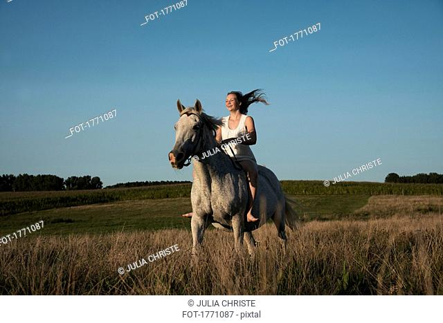 Girl riding horse in sunny, rural field
