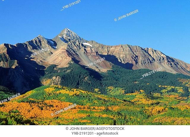 Mt. Wilson towers above forest of autumn aspen and spruce, Uncompahgre National Forest, southwest Colorado, USA