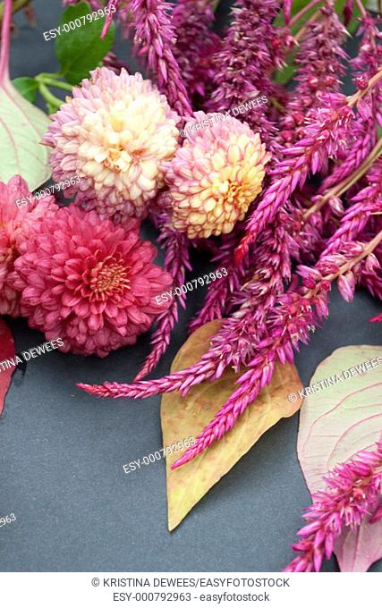 Fall leaves with pink Celosia and Chrysanthemums