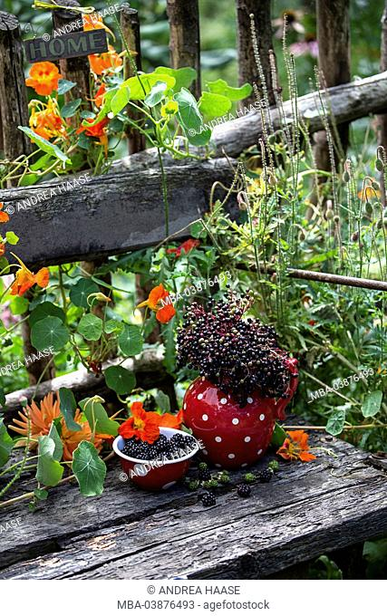 Spotted crockery and berries on old garden bench