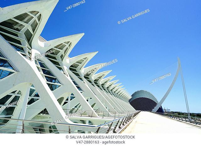 City of Arts and Sciences. Valencia. Spain