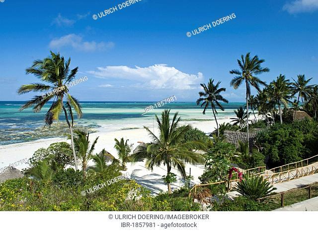 Palm beach on the south coast of Zanzibar, Tanzania, Africa