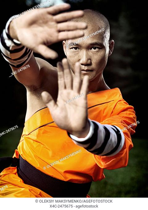 Dramatic portrait of a Shaolin warrior monk practicing an internal Kung Fu form