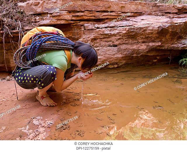 Female adventurer drinking from a desert oasis; Hanksville, Utah, United States of America