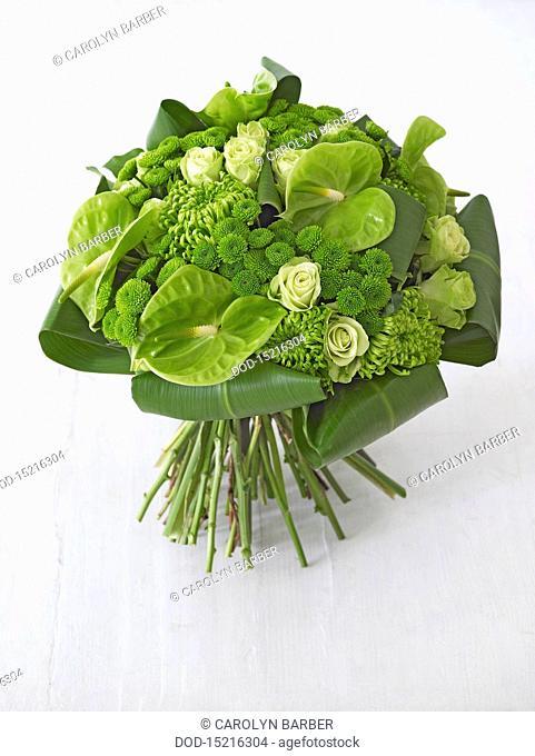 Green flower bouquet, including anthurium, roses, chrysanthemums, santini, close-up