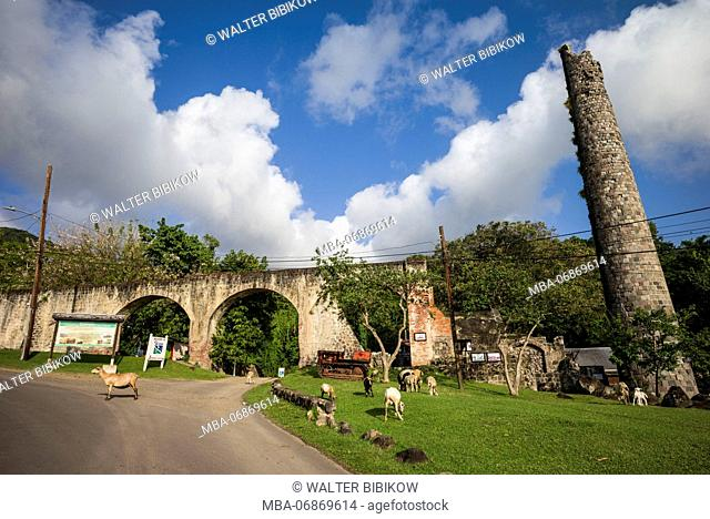 St. Kitts and Nevis, St. Kitts, Romney Manor, ruins of former 17th century sugar plantation