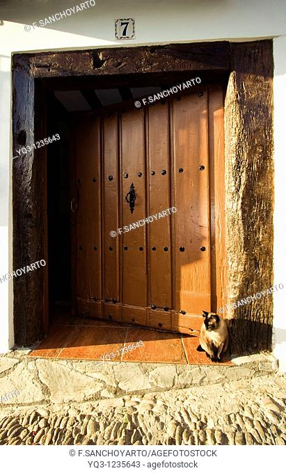 Cat by door in old town, Castro Urdiales, Cantabria, Spain