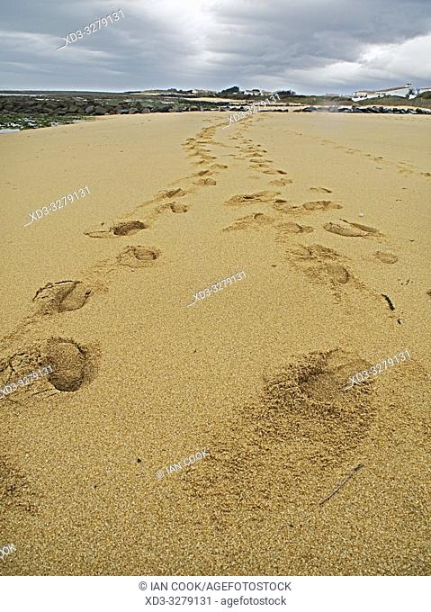 footprints on beach at La Cotiniere, Ile dâ. . Oleron, Charante-Maritime Department, Nouvelle Aquitaine, France