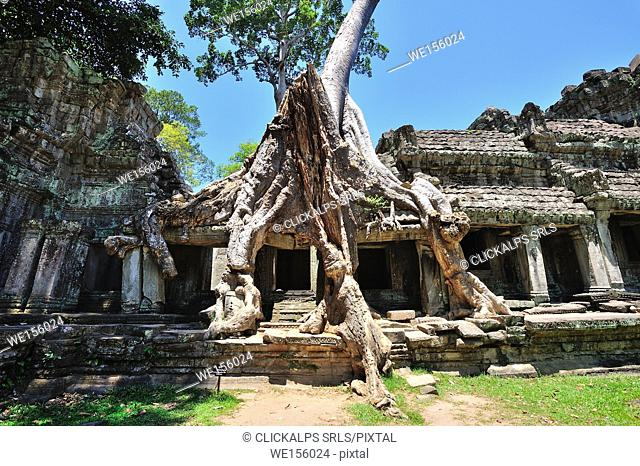 Cambodia, Siem Reap, ruins of the Bayon and Angkor Thom temple