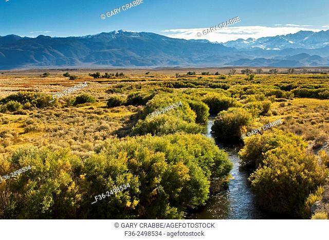 Owens River in the Owens Valley, near Bishop, Eastern Sierra, California