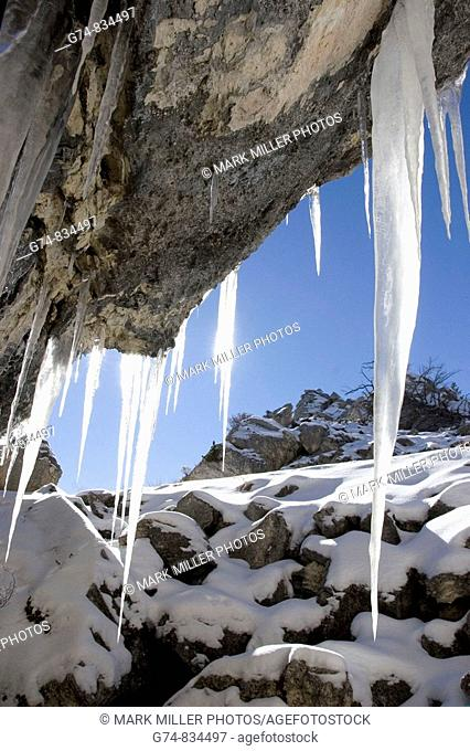 Icycles hanging in winter afternoon sun under rock ledge in Yellowstone National Park USA