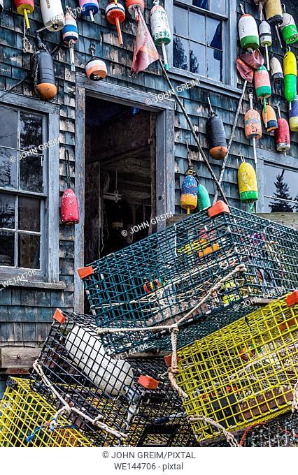 Colorful buoys adorn a rustic coastal shack, Bernard, Mt Desert Island, Maine, USA