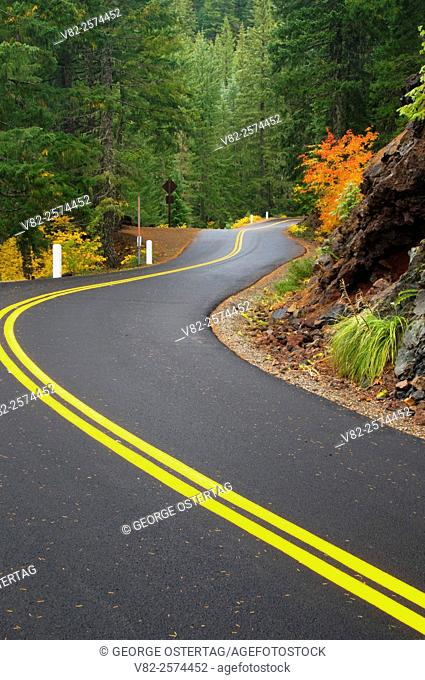 McKenzie Pass-Santiam Pass National Scenic Byway, Willamette National Forest, Oregon