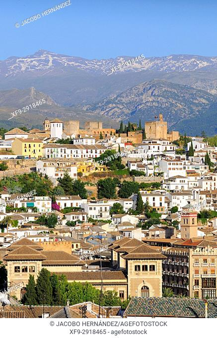 La Alhambra. Granada. Andalusia. Spain