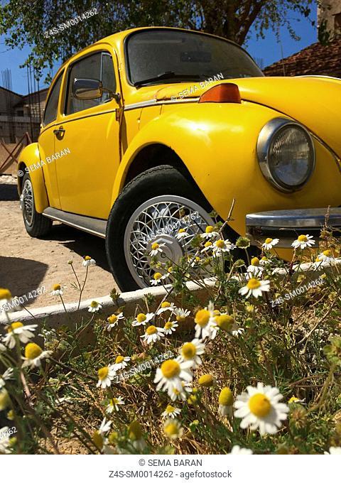 Yellow Volkswagen with daisies