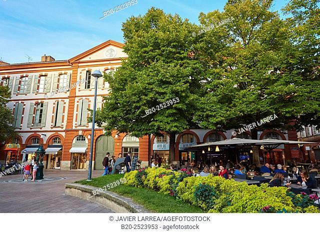 Place Saint Georges. Toulouse. Haute Garonne. France
