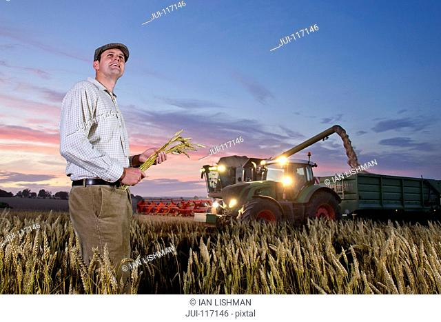Farmer Standing In Harvested Wheat Field At Dusk