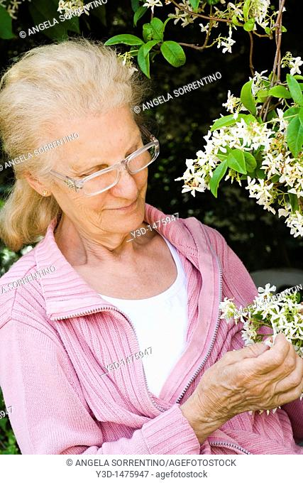 Senior woman looking at jasmine plant in the garden