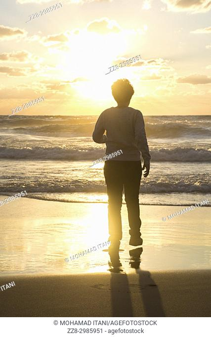 Rear view of a boy walking on the beach at sunset
