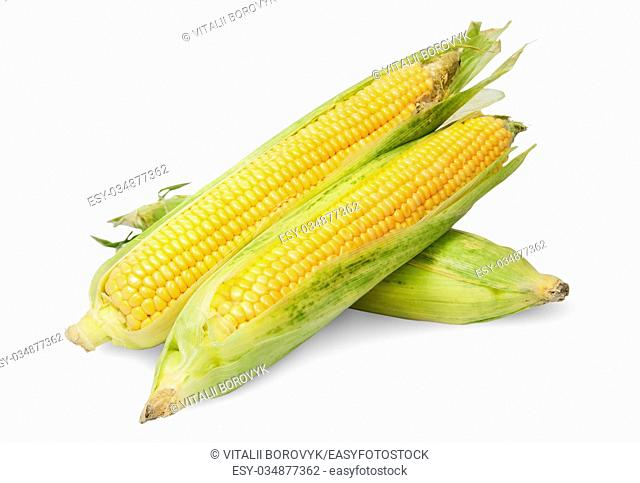 Three corn cob lying cross isolated on white background