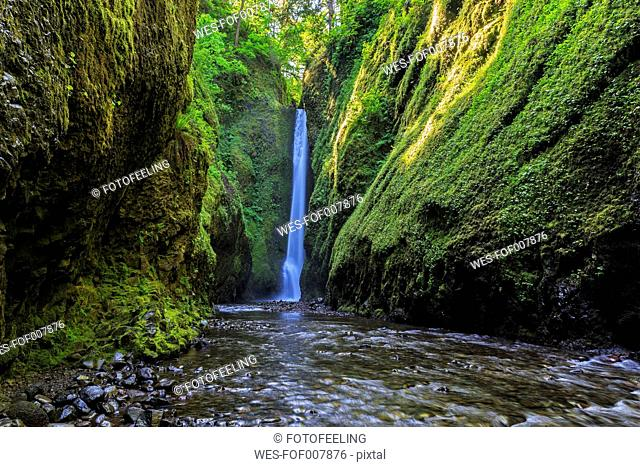 USA, Oregon, Multnomah County, Columbia River Gorge, Lower Oneonta Falls
