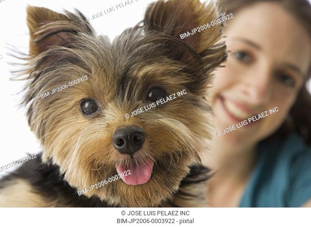 Close up of Yorkshire Terrier puppy and female owner